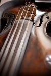 odsijek violina
